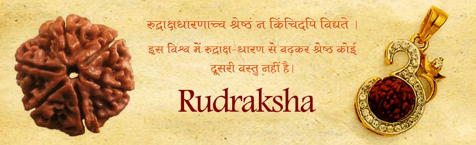What is a Rudraksh